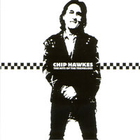 The Hits Of The Tremeloes — Chip Hawkes