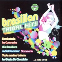 Brasilian Tribal Hits Vol. 2 Cover Version — сборник