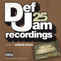 Def Jam 25, Vol 16 - Lifer's Picks: 298 to 160 to 825 — сборник