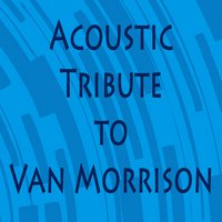 Acoustic Tribute to Van Morrison — 70s Music All Stars, Guitar Tribute Players, Steve Petrunak
