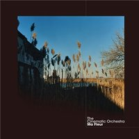 Ma Fleur — The Cinematic Orchestra