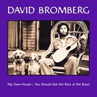 My Own House / You Should See The Rest Of The Band — David Bromberg
