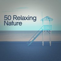 50 Relaxing Nature — Sounds Of Nature Relaxation