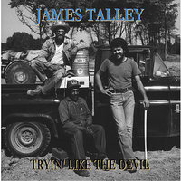 Tryin' Like the Devil — Charlie McCoy, JIM ROONEY, Johnny Gimble, Mike Leech, James Talley, Steve Young