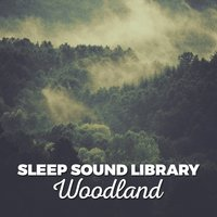 Sleep Sound Library: Woodland — Sleep Sound Library