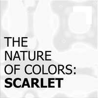 The Nature of Colors: White — сборник