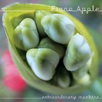 Extraordinary Machine — Fiona Apple