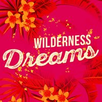 Wilderness Dreams — Dreams of Nature