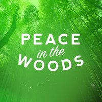 Peace in the Woods — Nature Sounds for Concentration