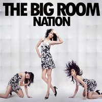 The Big Room Nation — сборник