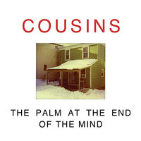 The Palm at the End of the Mind — Cousins