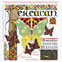 Feileacan — Ensemble Toss the Feathers