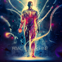 Anatomy — Fragile Machine