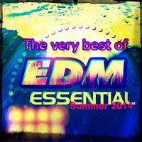 The Very Best of EDM Essential Summer 2014 — сборник