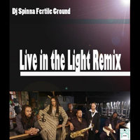 Live in the Light (Remix by Dj Spinna — Fertile Ground