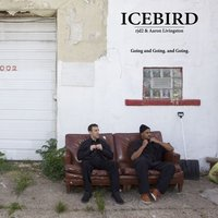 Going and Going. and Going. (Feat. rjd2 & Aaron Livingston) — Icebird