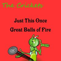 Just This Once — The Crickets