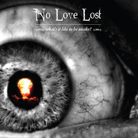 What's It Like To Be Awake? — No Love Lost