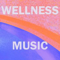 Music for Wellness Centers, Vol. 8 — Aaron Anderson