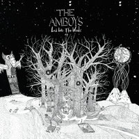 Led Into The Woods — The Amboys