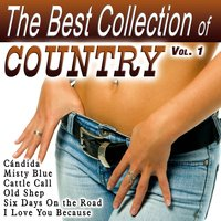 The Best Collection of Country Vol. 1 — сборник