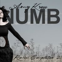 Numb Remix Compilation 2 — Amy Kress