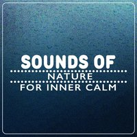 Sounds of Nature for Inner Calm — The Healing Sounds of Nature