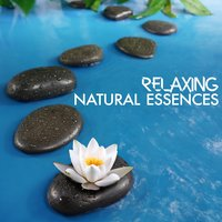 Relaxing Natural Essences — Nature Sounds Relaxing