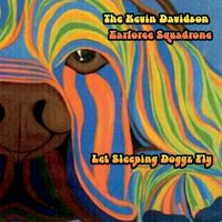 Let Sleeping Doggz Fly — The Kevin Davidson Earforce Squadrone