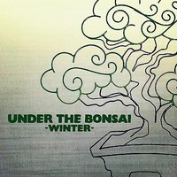 Under The Bonsai -Winter- Feat. Peter Man — Bonsai Record