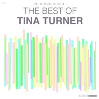 The Best of Tina Turner — Tina Turner