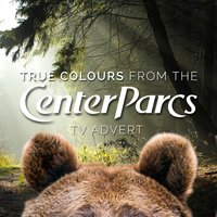 "True Colours (From the Center Parcs ""Bears"" T.V. Advert) — Billy Steinberg, Tom Kelly, L'Orchestra Cinematique, Ben Madeley"