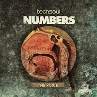 The Voice — Numbers