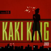 Junior — Kaki King