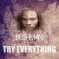 Try Everything — Bushman