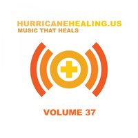 Hurricane Healing Vol.37 — сборник