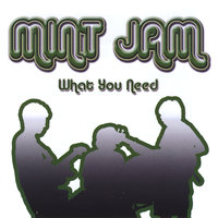What You Need — Mint Jam