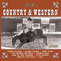 Country Hits Vol. 3 — Sampler