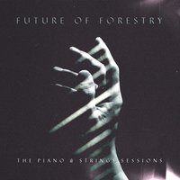 The Piano & Strings Sessions — Future Of Forestry