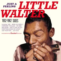 Just a Feeling: 1952 - 1962 Sides — Little Walter