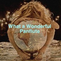 What a Wonderful Panflute — Ecosound