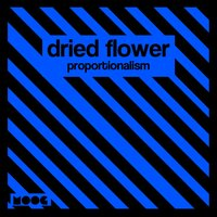 Proportionalism — Dried Flower