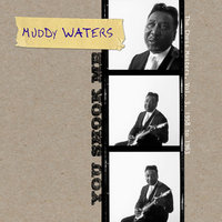 You Shook Me - The Chess Masters, Vol. 3, 1958 to 1963 — Muddy Waters