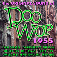 The Original Sound of Doo Wop 1955 — сборник