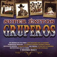 Super Exitos Gruperos — сборник