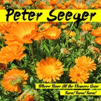 Where Have All the Flowers Gone — Peter Seeger