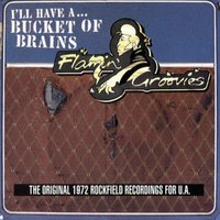 A Bucket Of Brains — The Flamin' Groovies