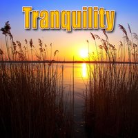 Tranquility (Nature Sounds) — Best Nature Sounds