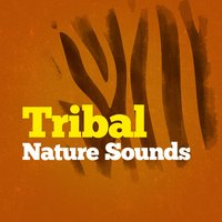 Tribal Nature Sounds — Massage Tribe, Natural Sounds, Nature Sound Collection, Massage Tribe|Natural Sounds|Nature Sound Collection