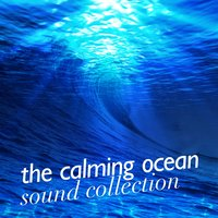 The Calming Ocean Sound Collection — Ocean Sounds Collection